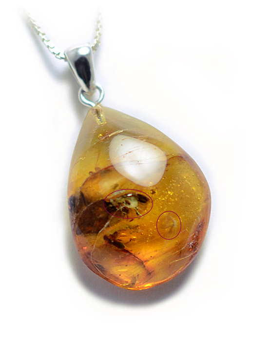 2 INSECTS Natural Baltic Amber Pendant Insect Fossil Inclusion Silver 8,3g 8381