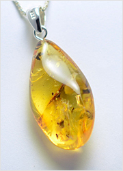 Baltic Amber Pendant Art.BP009